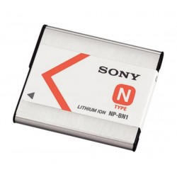 InfoLITHIUM battery type N