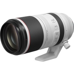 Canon 100-500mm RFf4.5-7.1 L IS II USM