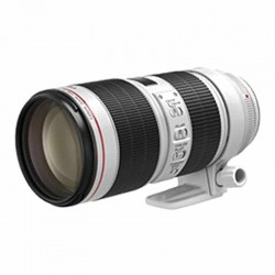 Canon 70-200mm f2.8 L IS...